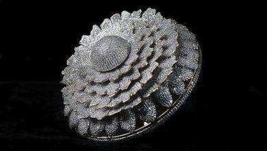صورة خاتم يدخل موسوعة غينيس لاحتوائه على عدد خيالي من الماسات