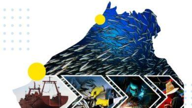 """صورة المغرب الأزرق يطلق مبادرة """"المنتدى  الأول لمهن البحر و ريادة الأعمال"""" بجهة كلميم وادنون"""