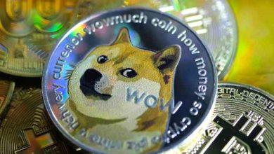 صورة دووج كوين.. العملة المشفرة تصبح أحدث صيحات المستثمرين المبتدئين