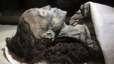 صورة كيف حافظت ملكات مصر الفرعونية على جمال شعرهن؟ علماء الآثار يجيبون