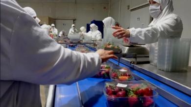 صورة ضعف حضور المغربيات في سوق الشغل يستوقف خبراء البنك الدولي
