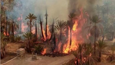 """صورة حريق مهول يلتهم 2500 شجرة نخيل بواحة """"تمزموط"""" ضواحي إقليم زاكورة"""