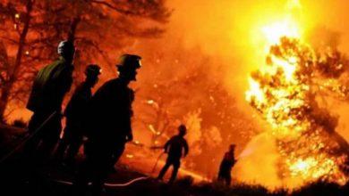 صورة مصرع 25 عسكريا جراء الحرائق في شمال الجزائر